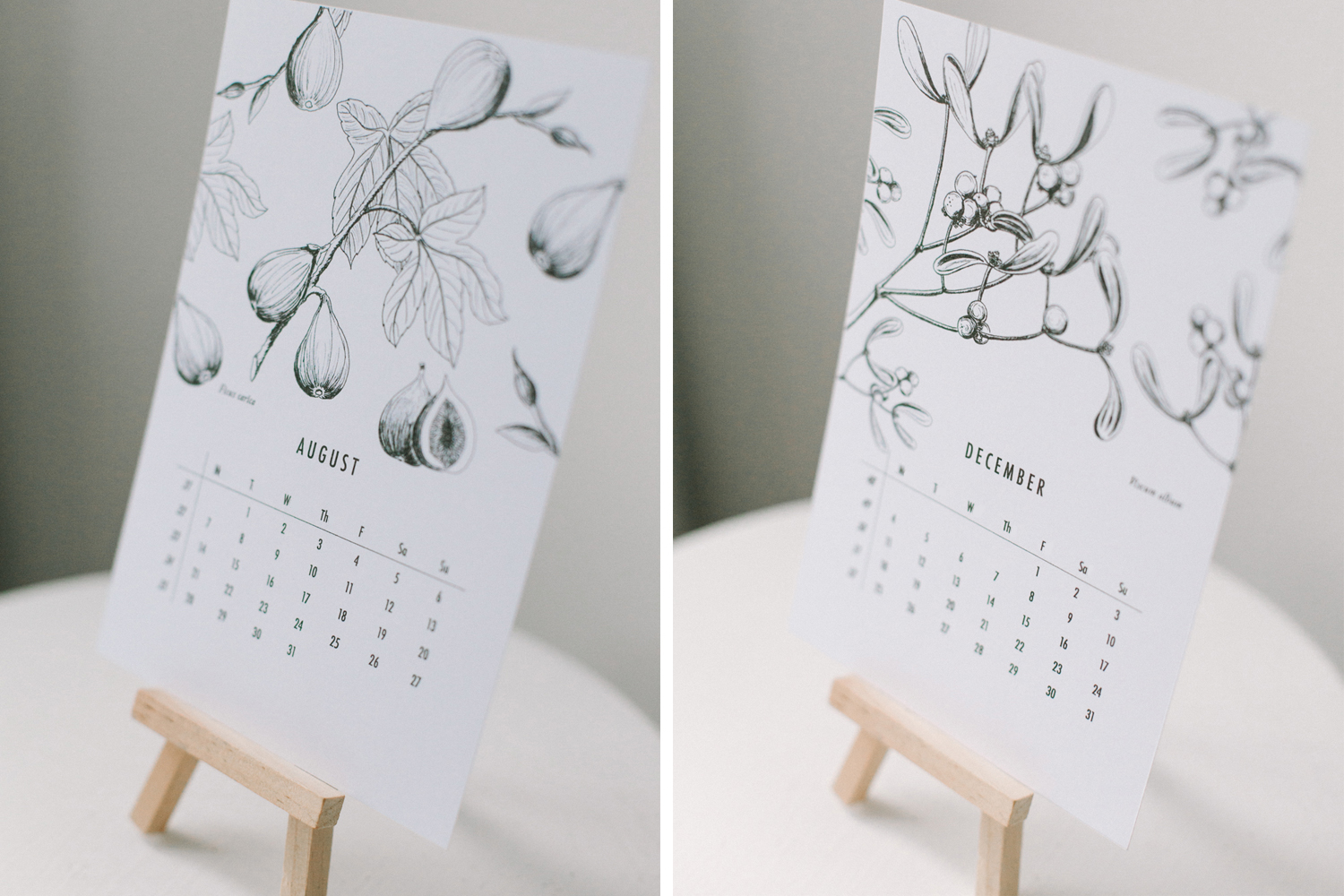 botanical-calendar_willow-visuals_2