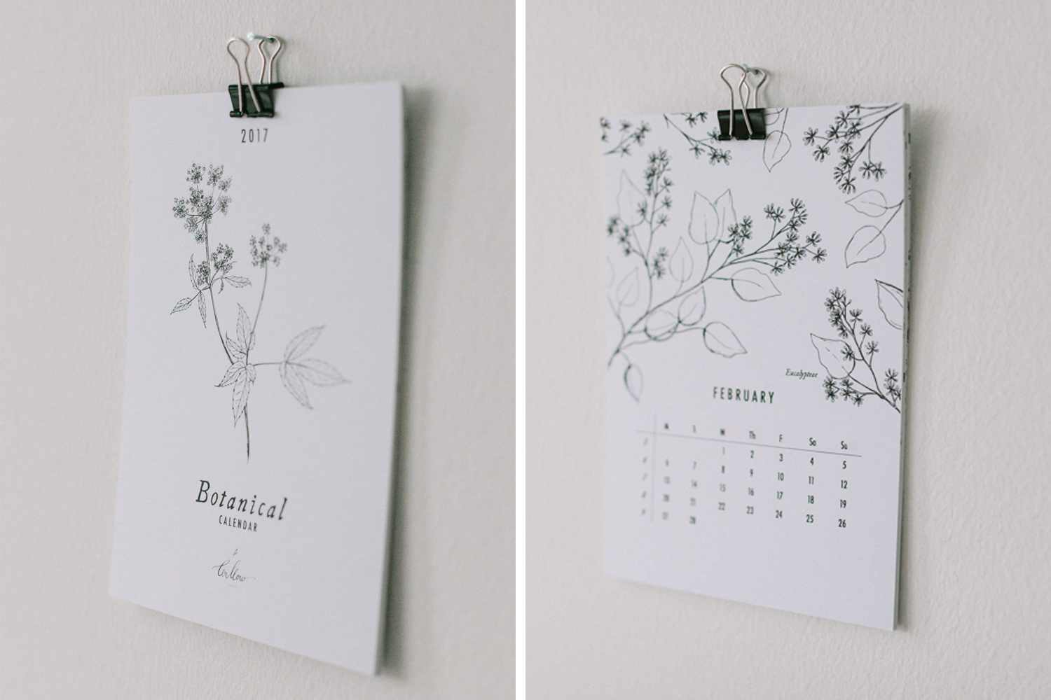 botanical-calendar_willow-visuals_5