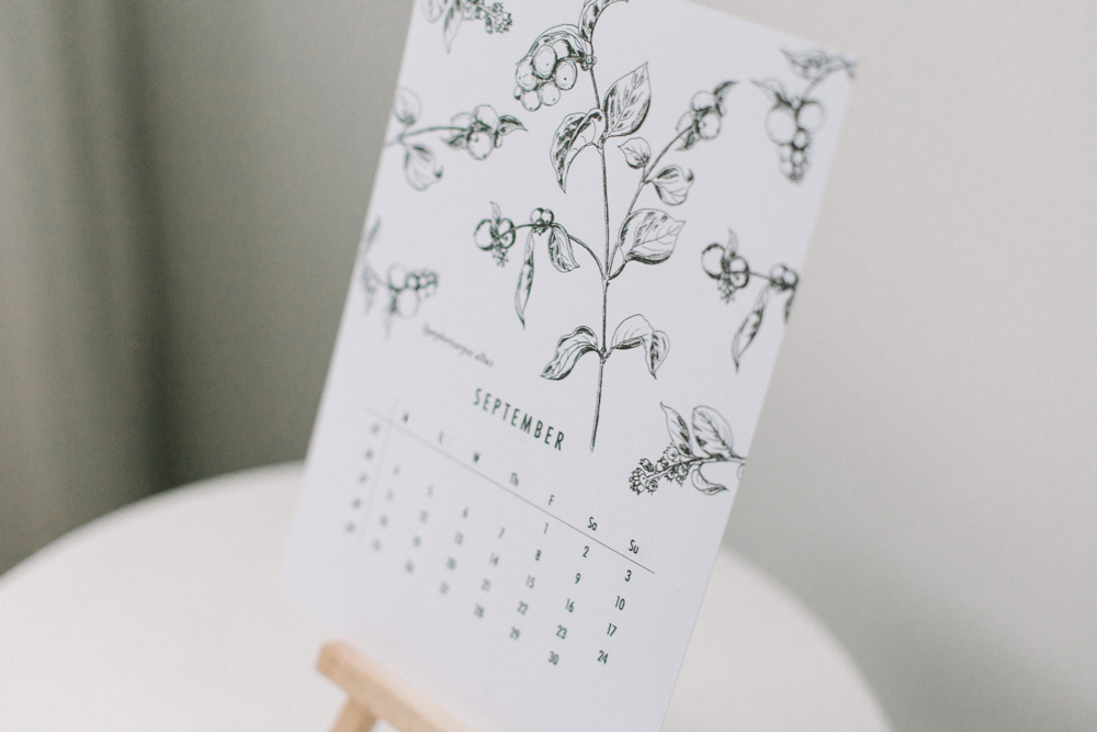 botanical-calendar_willow-visuals_6