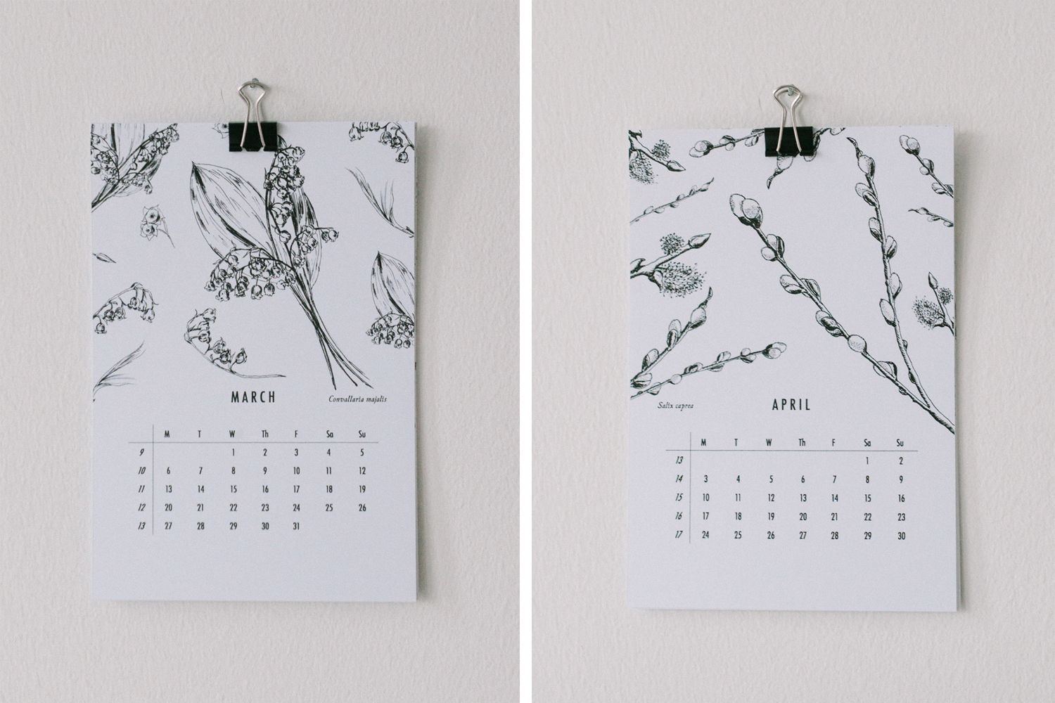 botanical-calendar_willow-visuals_7