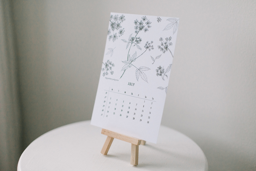 botanical-calendar_willow-visuals_8